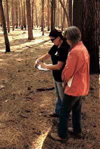 site steward at Sequoia NF